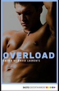 Overload  - David Evans - eBook