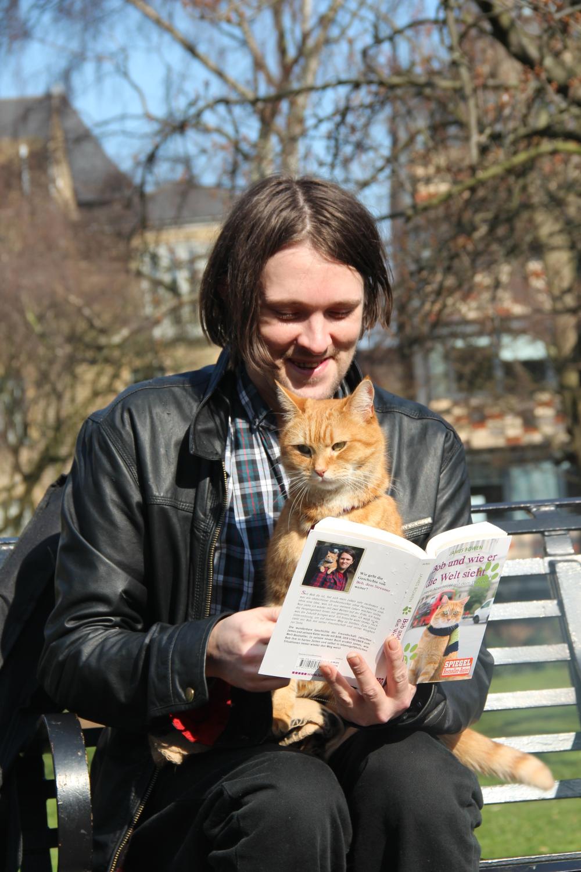 Belle Street Cat Named Bob